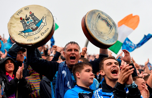 Dublin supporters on Hill 16