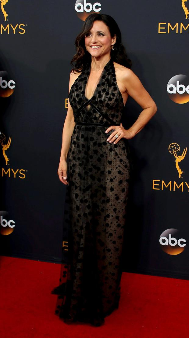 Actress Julia Louis-Dreyfus from the HBO series