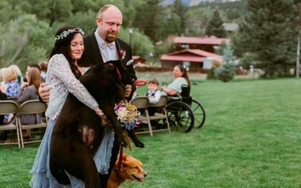 The couple on their wedding day with the dog. Credit: JenDZ Photography
