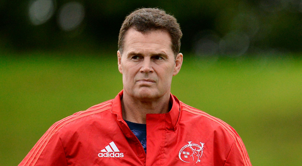 Rassie Erasmus. Photo: Seb Daly/Sportsfile