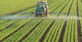 The cost of fertilisers came down by 17pc.