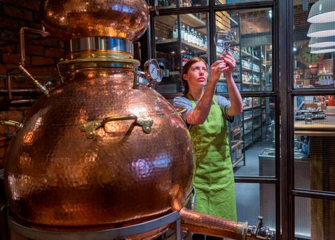 Ireland is to get its first Bachelor of Science honours degree programme in brewing and distilling next year, to help meet the rapidly-growing needs of industry.