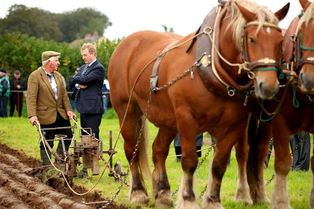 Enda Kenny chats with Gerry King from Co. Louth at the ploughing. Picture; Gerry Mooney