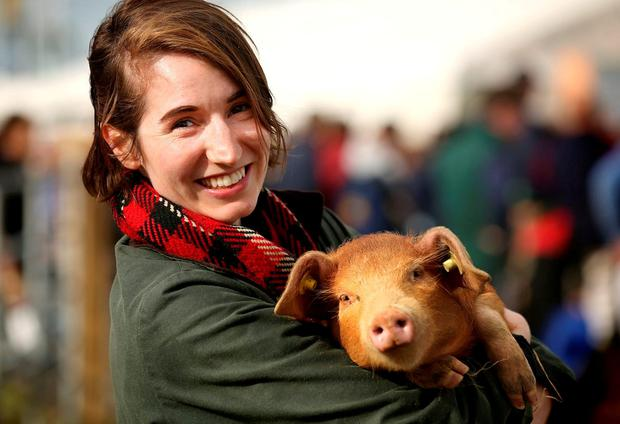 Irish Independent reporter Kirsty Blake Knox with a pig. Photo: Gerry Mooney