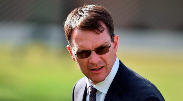 Aidan O'Brien.. Photo by Brendan Moran/Sportsfile...CRP