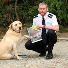 Conor Dowling at launch of report with rescued dog Bailey. Source: ISPCA website