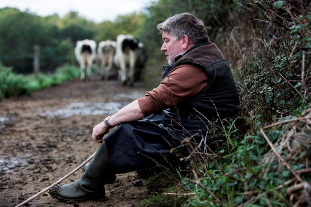 Pat Shortt as Tom in Gerard Barrett's Smalltown