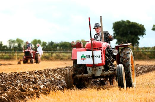 Peter McDonald from Mullinavat Co. Kilkenny competing in the Vintage Single Furrow class with his 1950 Steyr single cylinder tractor at the National Ploughing Championships. Photo: Gerry Mooney