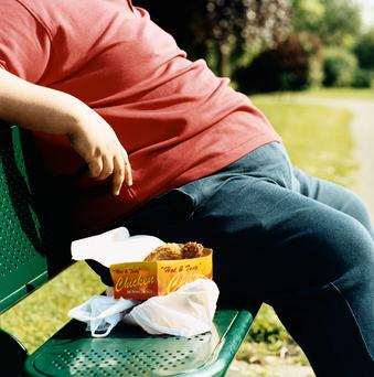 'In outlining the many determinants of obesity in the introduction, no mention is made of excessive consumption of unhealthy food'. Stock photo: Getty