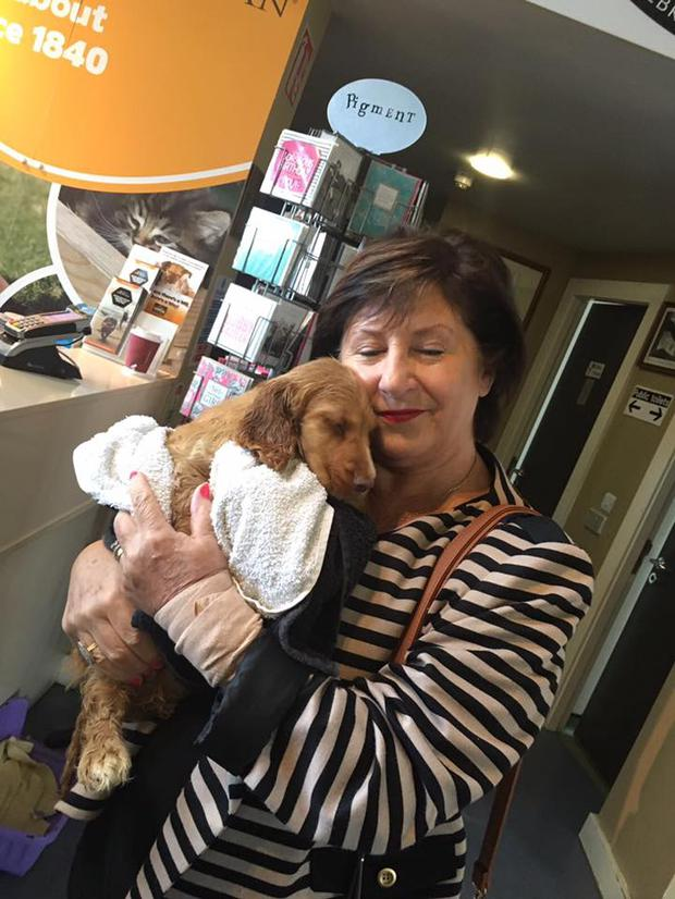 The pups found new owners thanks to the DSPCA