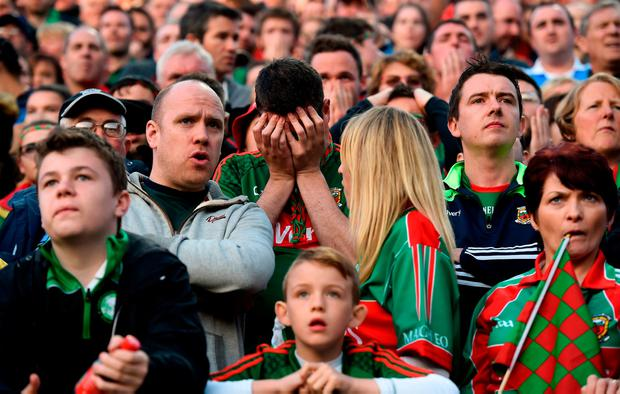 Mayo fans at the final whistle. Photo by Cody Glenn/Sportsfile