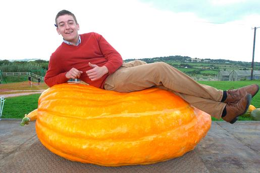 Patrick Sullivan from Rathdrinagh, Collon, Co Louth, with his 416kg pumpkin. Photo: Seamus Farrelly