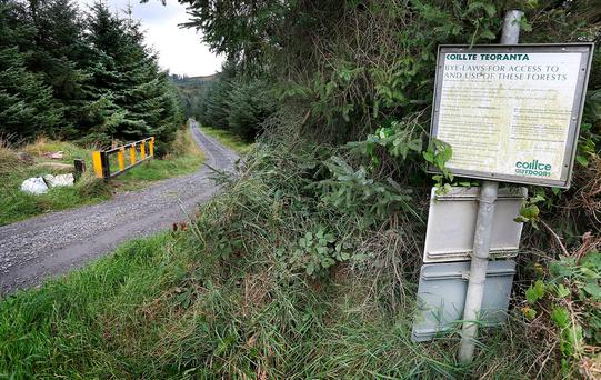 Mr McCoy's body was found on Ballinascorney Hill in the early hours of Friday on a mountain path after an extensive search. Photo: Steve Humphreys