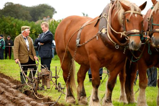 Taoiseach Enda Kenny chats with Gerry King from Co Louth at the recent National Ploughing Championships in Tullamore. Photo: Gerry Mooney