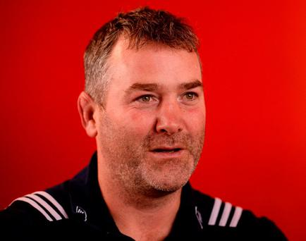 Munster head coach Anthony Foley. Photo: Diarmuid Greene/Sportsfile