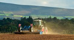 The wind that shakes the barley: John Jenkinson from Ballywilliamroe, Bagenalstown, Co Carlow working the autumn light as he prepares the field for sowing winter barley. Photo Roger Jones