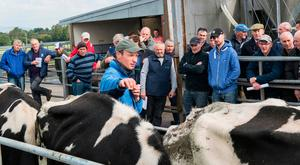 Leonard Betts, Teagasc discusses condition scoring with farmers at the Tipperary Co-op open day on 'Feeding & Managing The Dairy/Dry Cow' at the Solohead research farm. Photo O'Gorman Photography