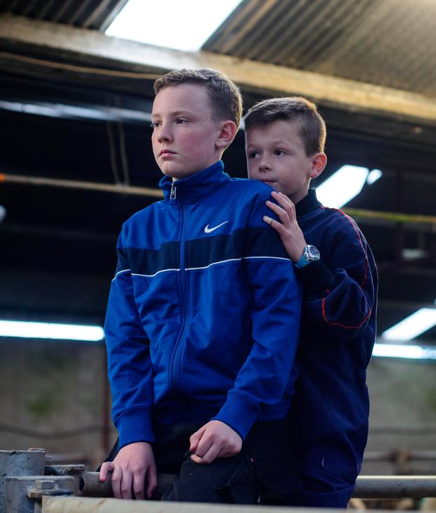 Michael Doehrty and Killian Bonner at the Raphoe Livestock Mart Weanling Show and Sale. Photo Clive Wasson