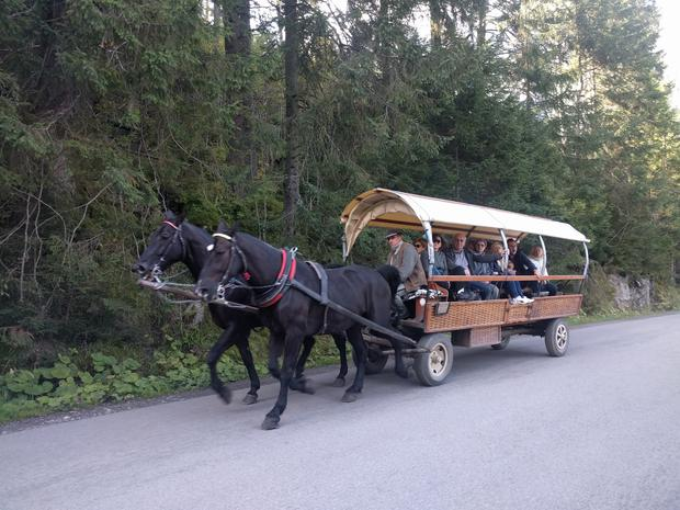 Horse and Cart to Morskie Oko