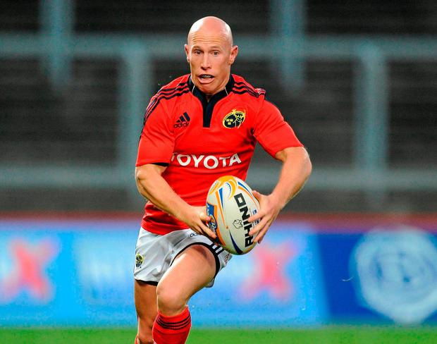 Former Munster player Peter Stringer. Photo: Matt Browne / Sportsfile