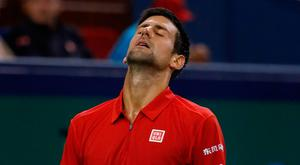 Novak Djokovic during his match with Roberto Bautista Agut in the Shanghai Masters. Photo: Andy Wong