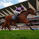 Minding and Ryan Moore pass the Ascot winning post in front to land Saturday's Queen Elizabeth Stakes. Photo by Alan Crowhurst/Getty Images