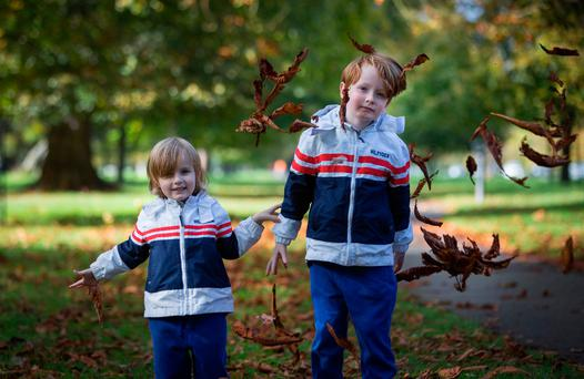 Chase Reynolds (3) and his brother Sean (5), from Cabra, play with the autumn leaves in the Phoenix Park. Picture by Fergal Phillips
