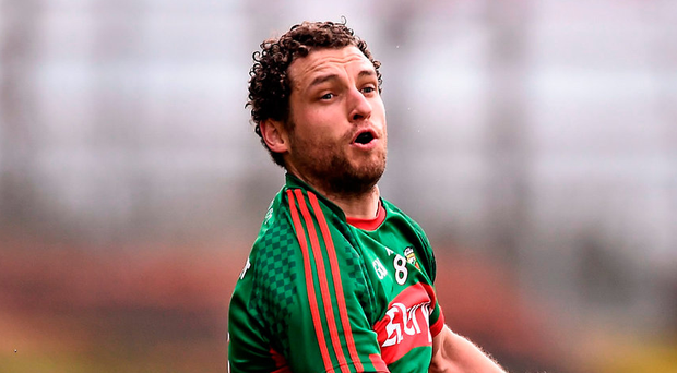 Mayo's Tom Parsons Picture: David Maher / SPORTSFILE