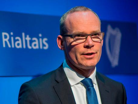 Simon Coveney: Gave briefing to Cabinet members
