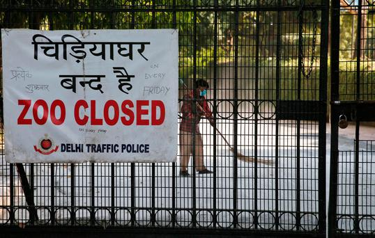 A sweeper cleans a road inside the closed premises of the National Zoological Park in New Delhi, India (AP Photo/Saurabh Das)