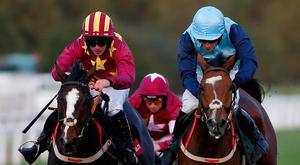 Heron Heights (left), with Philip Enright up, clears the last on the way to winning the Novices' Steeplechase at Cheltenham from stablemate Full Cry. Photo: Alan Crowhurst/Getty Images