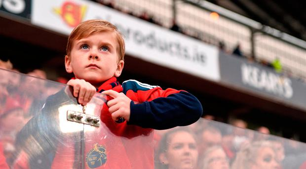 Munster supporter Joshua Power, aged 8, from Clonlara, Co. Clare, at the European Rugby Champions Cup Pool 1 Round 2 match between Munster and Glasgow Warriors at Thomond Park in Limerick. Photo by Diarmuid Greene/Sportsfile