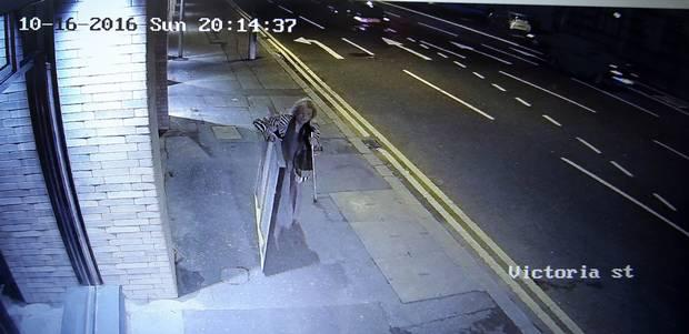 CCTV footage released after the theft