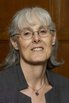 Professor Cecily Begley Picture: Mark Monahan