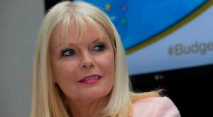 Jobs Minister Mary Mitchell O'Connor. Picture by Fergal Phillips