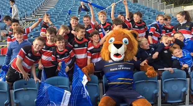 Wicklow RFC minis at the RDS