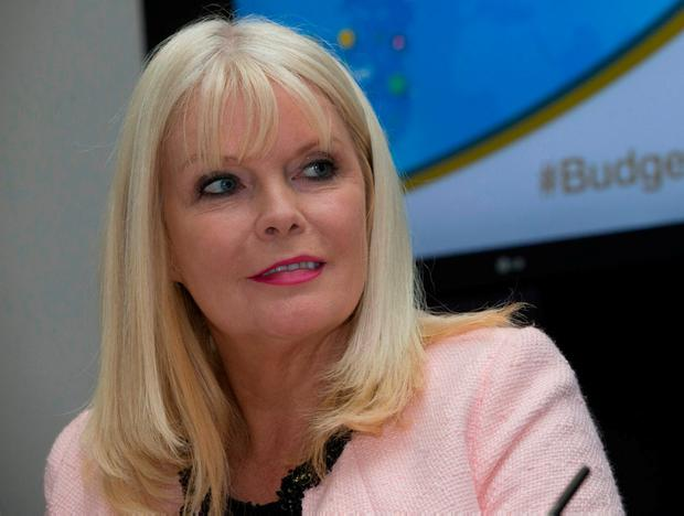 Jobs Minister Mary Mitchell O'Connor Photo: Fergal Phillips