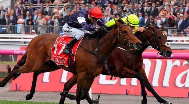 Almandin (left), with Kerrin McEvoy up, on the way to getting the better of Heartbreak City (Joao Moreira) in a thrilling finish to the Melbourne Cup. Photo: Andy Brownbill/AP Photo
