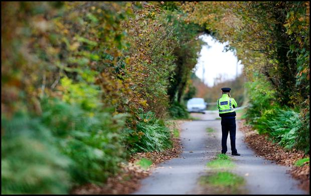 Gardai at the sealed off road in Knockadoon outside Tom and Kitty Fitzgerald's home where their bodies were discovered. PIc Steve Humphreys 2nd November 2016