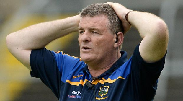 Tipperary manager Liam Kearns. Photo by Oliver McVeigh/Sportsfile