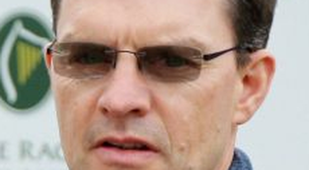 The Juvenile Fillies Turf will see Aidan O'Brien pitted against his sons