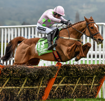 Annie Power can be placed to win a few Grade Ones this season. Photo: Seb Daly/Sportsfile