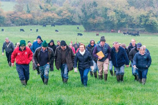Beef producers are pictured at a Teagasc autumn grass walk on the farm of Billy Glasheen, Lismolin, Ballingarry, Co Tipperary. Photo: O'Gorman Photography