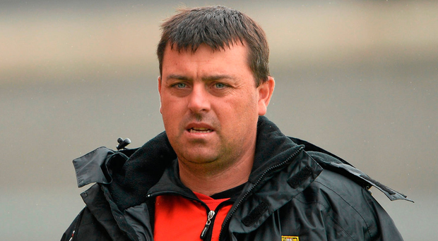 Paul Flynn will act as a coach to the forwards once the new management team is ratified. Photo: Sportsfile