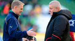 Warren Gatland has said there could be a Lions role for Ireland head coach Joe Schmidt