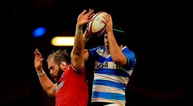 Alun Wyn Jones of Wales and Matias Alemanno of Argentina battle for lineout ball. Photo: Getty