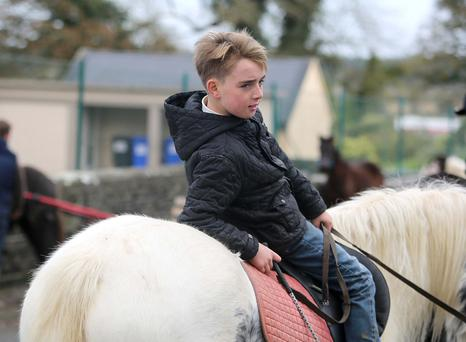 Lee Hegarty from Charleville, Co. Cork looking for a buyer at the Killconnell Horse Fair, Co. Galway. Photograph: Hany Marzouk