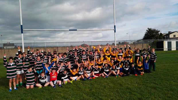 Rugby blitz for young Limerick pupils
