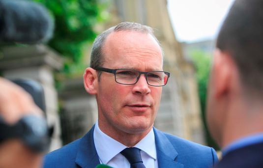 Housing Minister Simon Coveney Photo: Gareth Chaney