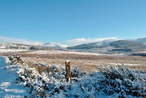 Freezing temperatures could cause snow to fall this weekend Photo: Depositphotos